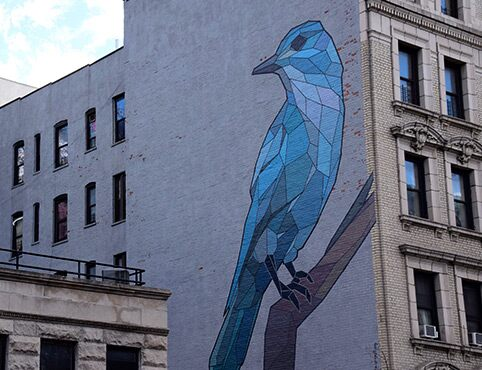 A blue bird on a city wall in Harlem as part of the Mary Lacy Mural Tour.