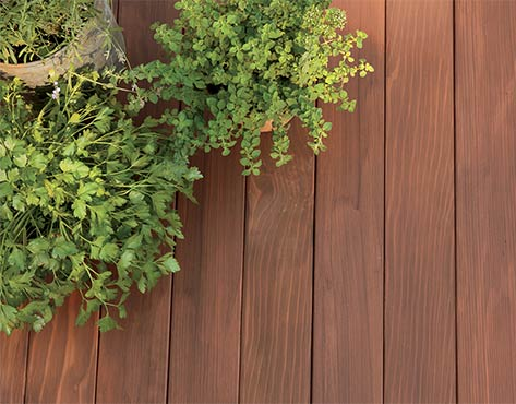 Plants sit on a redwood deck stained in ARBORCOAT Semi Solid in Fresh Brew.