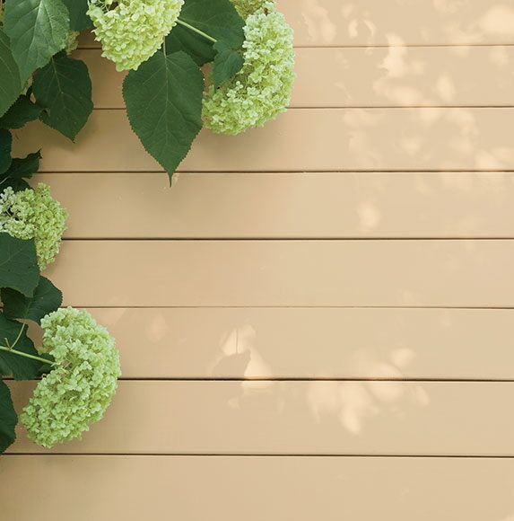 Hydrangeas sit on a pine deck stained with ARBORCOAT Solid stain in Richmond Bisque.