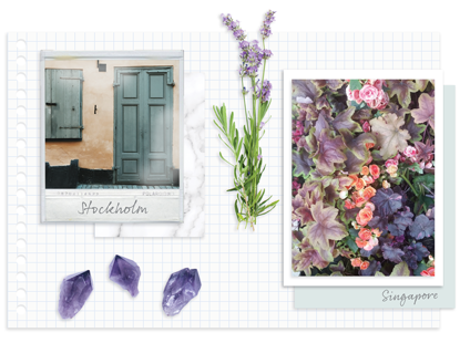 How environment inspires colour of the year choice