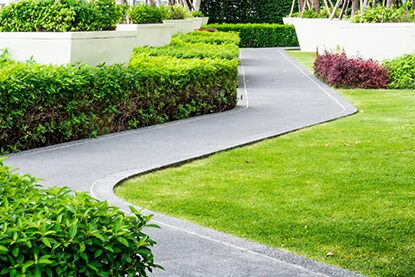 Winding paved path with surrounding shrubbery