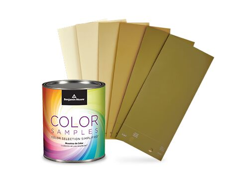 Benjamin Moore® paint sample and color swatches.