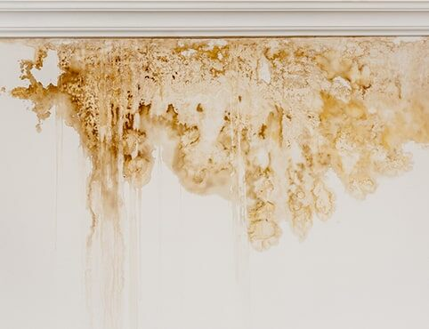 Surfactant leaching on a white interior wall.