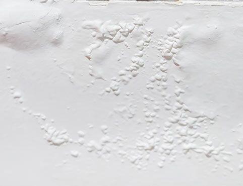 Blistering Paint Bubbling Paint Help | Benjamin Moore
