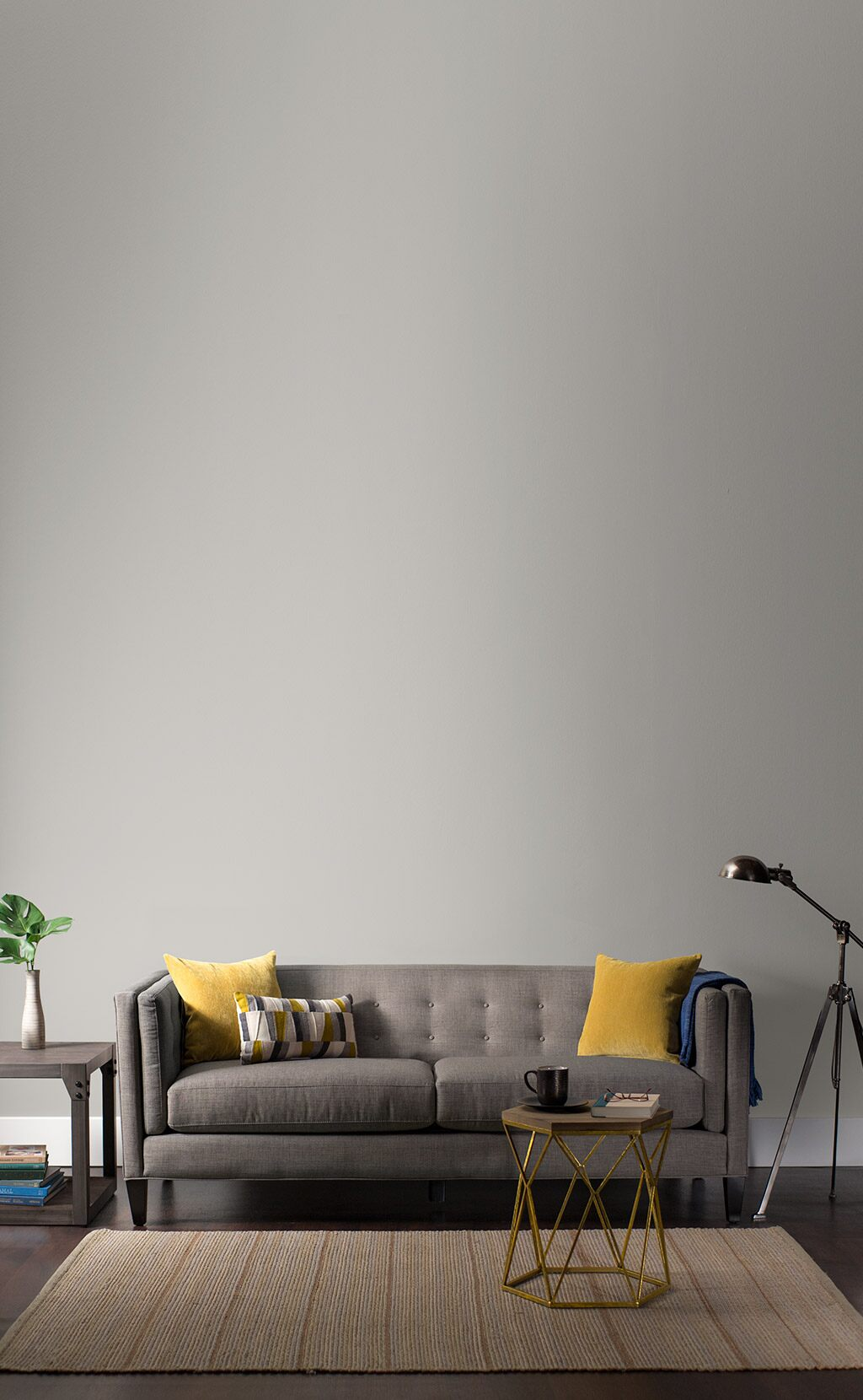 Gray living room with gray couch